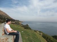 whale coast